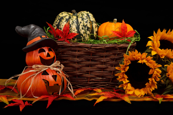 plan halloween party